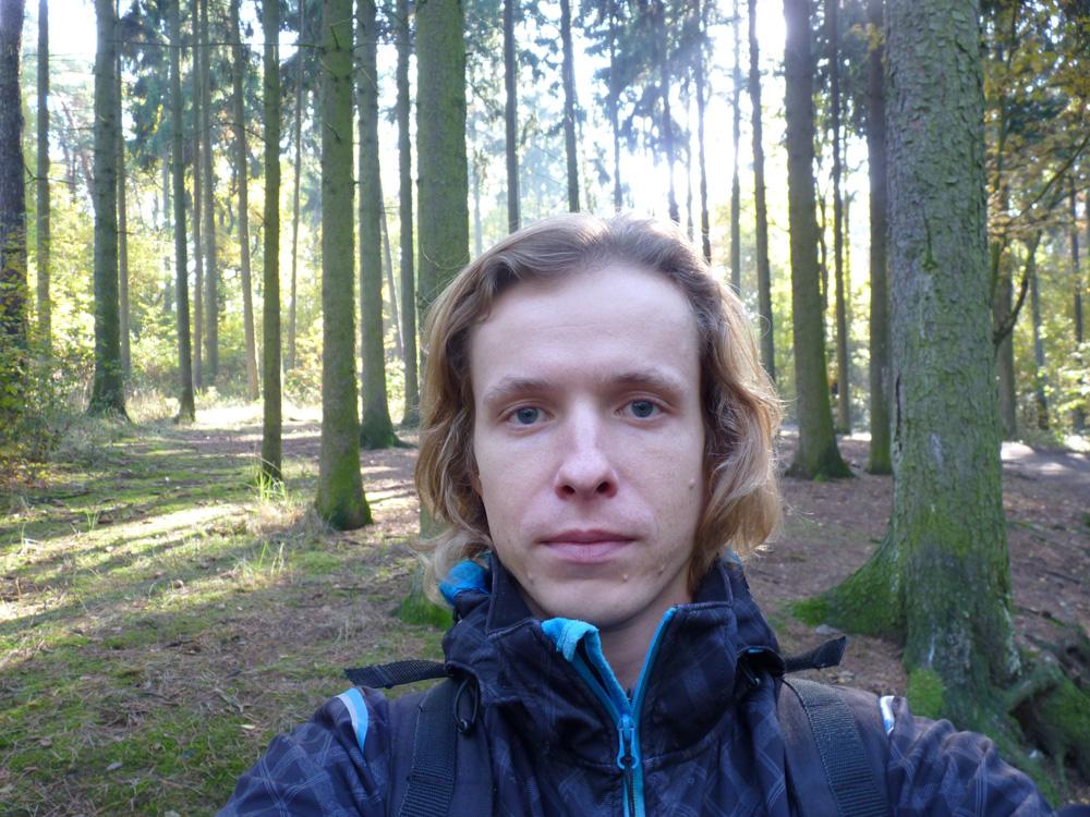 ja v lese